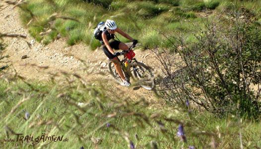 Die Trailg�msen: Erlebe das Abenteuer Mountainbike