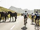 Teilnehmerrekord beim Arlberg Giro 2013