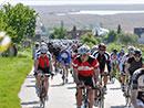 Teilnehmerrekord beim Neusiedler See Radmarathon