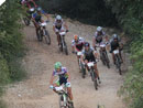 Ol Istria MTB Tour - Parenzana Cannondale