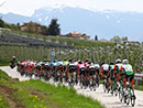12 UCI World Tour Teams bei der Tour of the Alps von 19. bis 23. April 2021