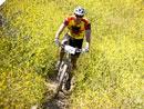 Wild Wombat MTB Challenge 25.6.2011