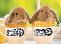 Oster-Rabatt für radmarathon.at-Freunde beim Alpe Adria Bikefestival